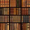Lucano Tarquini Library-1-xs